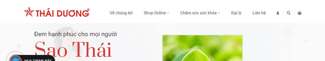 ThaiDuong – Theme WordPress bán dược phẩm thảo dược