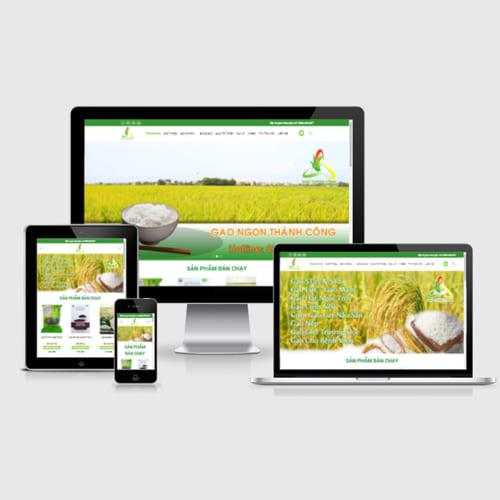 Mẫu Website Gạo Sạch MA-311